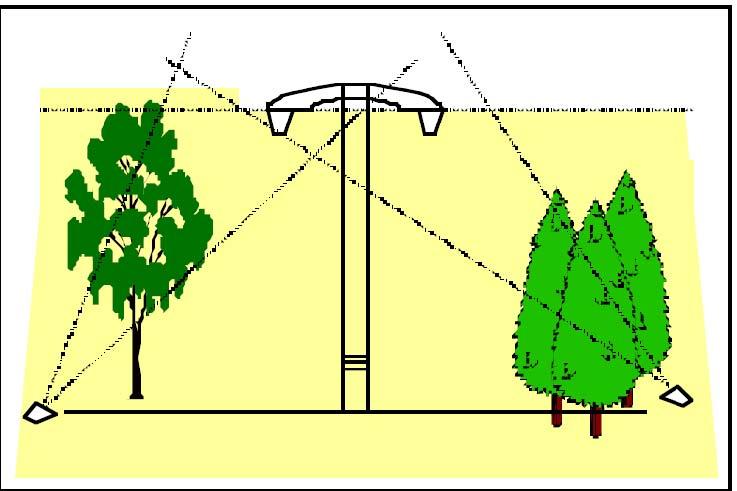 طراحی روشنایی ضعیف برای درختان