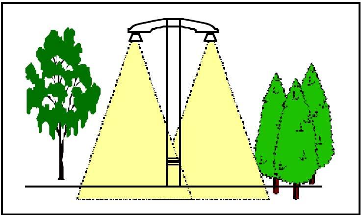 بهترین نوع طراحی روشنایی برای درختان
